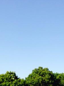 雲ひとつない空2