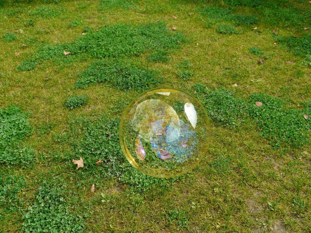 シャボン玉と芝