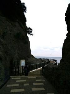 江の島・岩屋 041.jpg明るさ調整済み