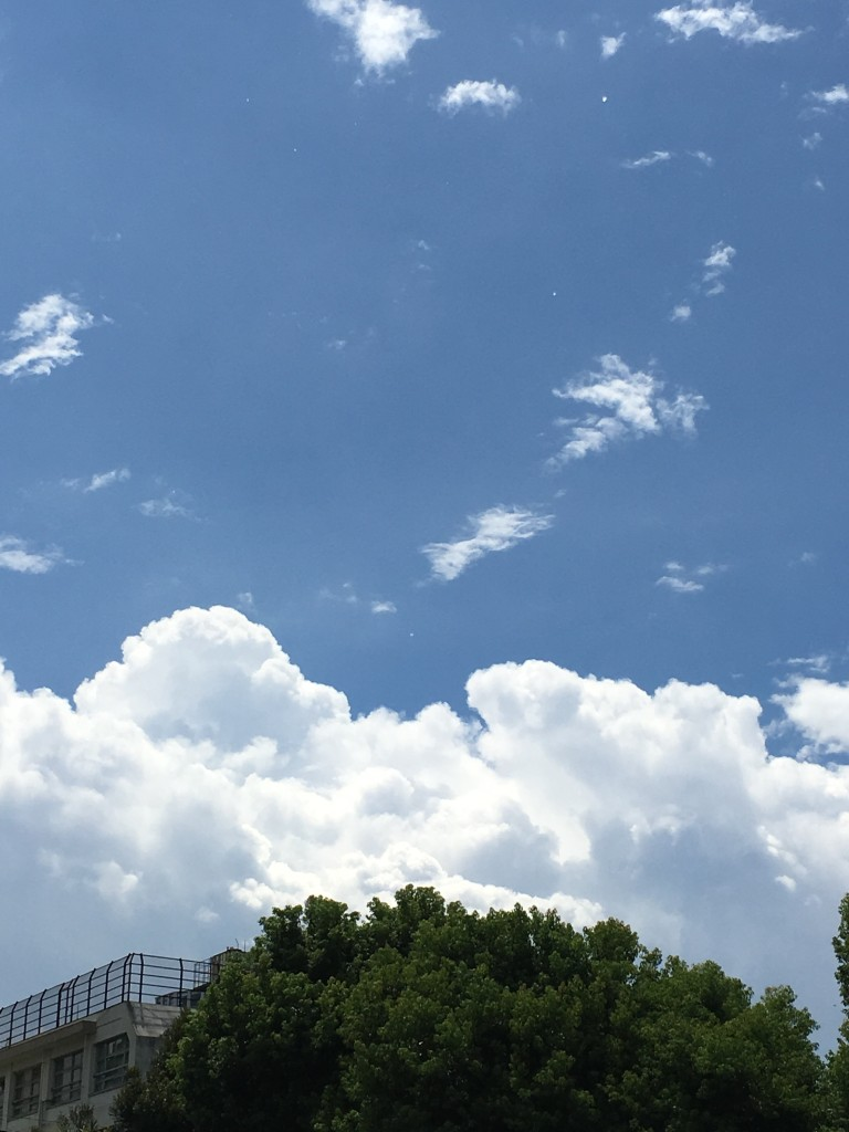夏の空と日差し 005.jpg位置調整済み
