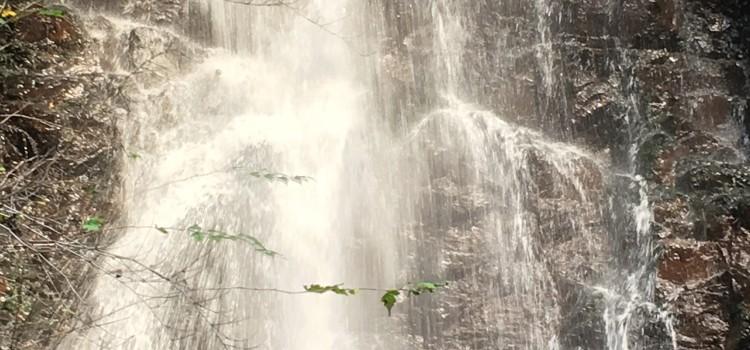 「壮大なパワーを満喫する」~河口浅間神社&母の白滝②